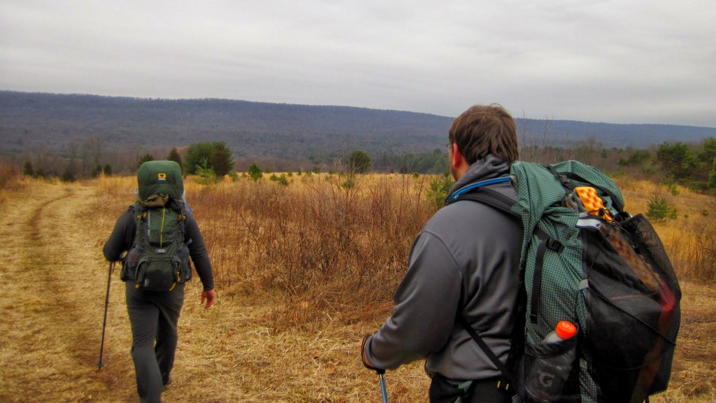 After the descent into Swatara Gap, the trail opened up a bit